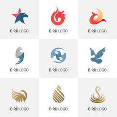 Set of various bird symbols and logo design elements. Logos for your business.