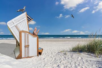 Strandkorb clipart  Bilder und Videos suchen: strandkorb
