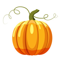 Pumpkin icon. Cartoon illustration of pumpkin vector icon for web