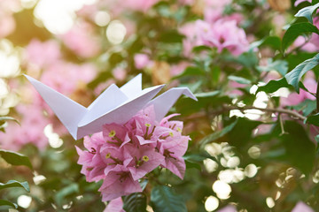 close up of paper crane