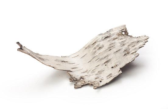 Bark of birch