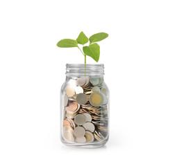 money in glass piggy  bank