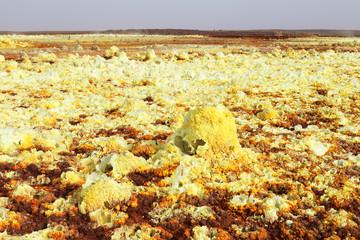 Yellow Landscape of Dallol volcano, Danakil Depression, Ethiopia