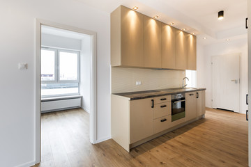 Empty room with domestic kitchen