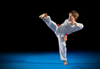 Little boy martial arts fighter