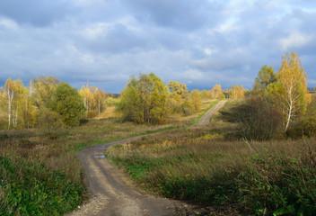 Осенний пейзаж с видом извилистой грунтовой дороги, деревьев и облаков