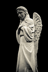 Statue of crying angel, isolated on black background. Black and