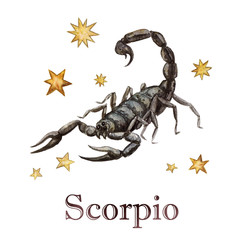 Zodiac sign - Scorpio.