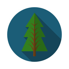 Flat design modern vector illustration of pine tree icon, with long shadow