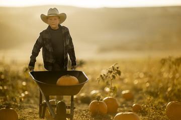 Young boy pushing a wheelbarrow of pumpkins in a field.