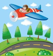 Pilot flying plane over the land