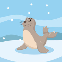 seal character vector illustration design