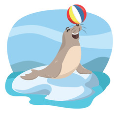 seal acrobatic vector illustration design