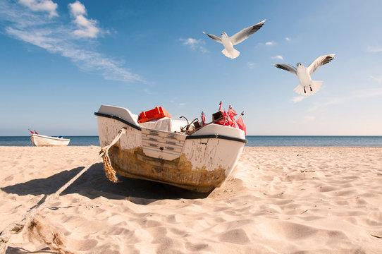 Altes Fischerboot am Strand mit Möwen