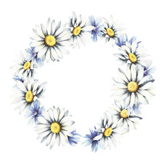 Wreath with daisies and cornflowers. Watercolor illustration.