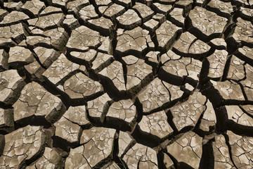 Cracked and parched earth, dry lake bed, Xuan Huong Lake, Dalat, Vietnam