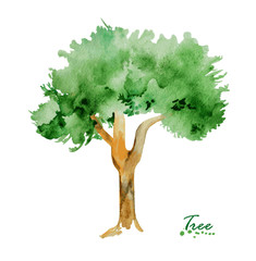 Watercolor tree green