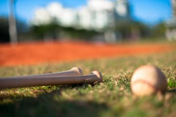 Wooden bats and baseball on grass