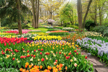 Deurstickers Groene Colourful Tulips Flowerbeds and Path in an Spring Formal Garden