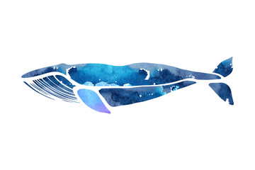 Blue whale. Balaenoptera musculus. Whale isolated on a light background. Logo for your design. Hand drawn.