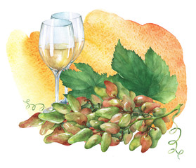 Bunch of fresh grapes and glasses of  white wine . Hand drawn watercolor painting on yellow and orange watercolor background.