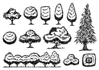 set of free hand drawing trees, vector illustration design