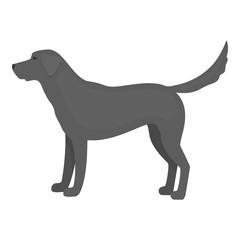 Labrador vector icon in monochrome style for web