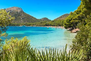Formentor beach in Palma of Majorca island