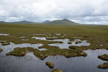 Flow Country Bog Land