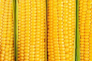 ripe corn texture