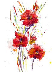 A bouquet of flowers. Hand drawn watercolor flowers.