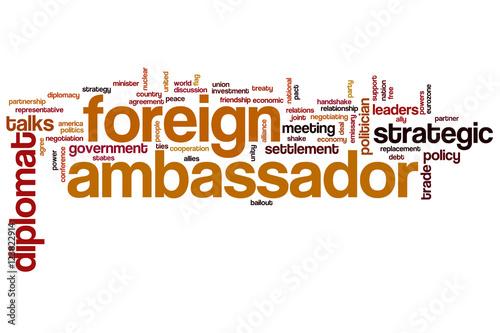 foreign ambassador word cloud stockfotos und lizenzfreie bilder auf bild 123822914. Black Bedroom Furniture Sets. Home Design Ideas