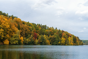 Autumn colors Tree and Forest in Lithunia. Zalieji ezerai. Landscape and Nature. Lake in foreground.
