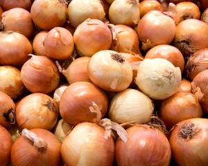 Fresh organic onion in local farmers market store