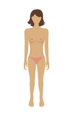 Vector female body in underwear.