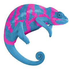 Colorful Chameleon Create Word