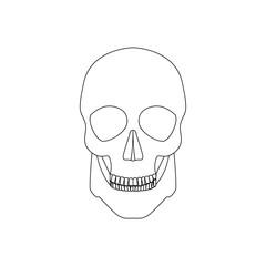 Icon human skull
