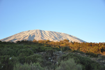 Mount Kilimanjaro in the morning light