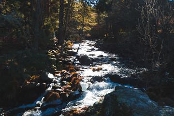 Río de deshielo / Río de deshielo bajando rápido por las rocas