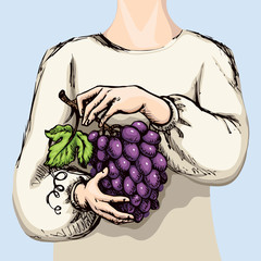 Hands with bunch of grapes. Vector drawing