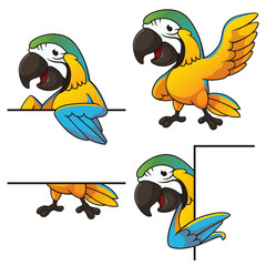 Tiny parrot sign board