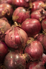 Fresh Red onions in plenty background. Harvested Red Onions in container. selective focus