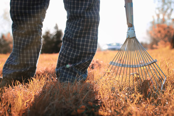 man with rakes in autumn old grass
