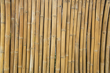 bamboo texture backgroung