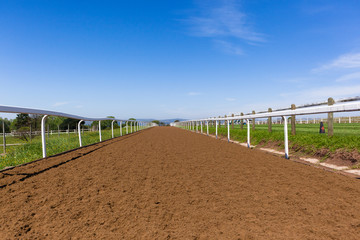 Race Horse Training Track