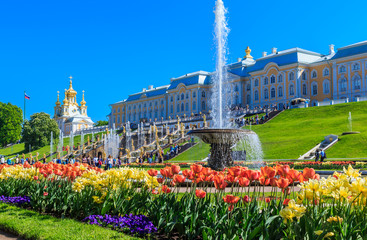 PETERGOF, RUSSIA, MAY 2016: Peterhof Palace and Grand Cascade of fountains