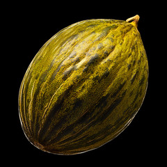 Melon isolated on black background. With clipping path.