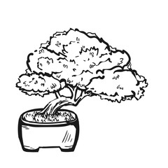 Handdrawn decorative asian bonsai tree in the pot growing on a rock with branched trunk and conifer foliage.
