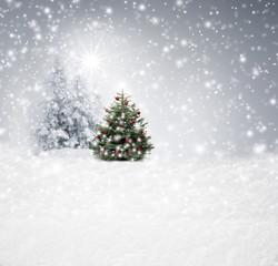 Wall Mural - Christbaum im Schnee