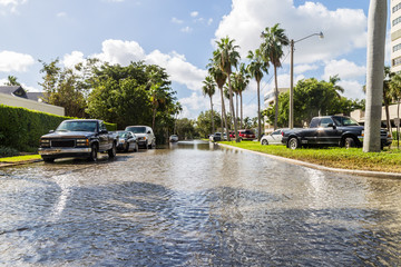 Perfect tide/In Fort Lauderdale, a sea wall  along Las Olas Boulevard was no match for the biannual king tide that brings salt water to the streets